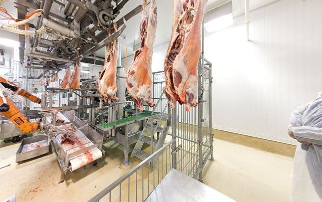Industrial Food Machine of the Day: Automated Lamb Boner