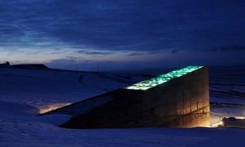 Middle Eastern seed bank re-deposits backups into Svalbard's doomsday vault