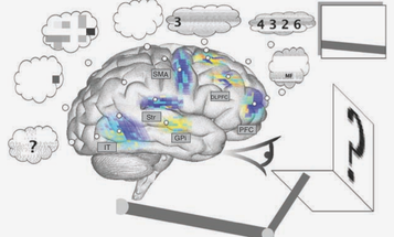 Meet Spaun, The Most Complex Simulated Brain Ever