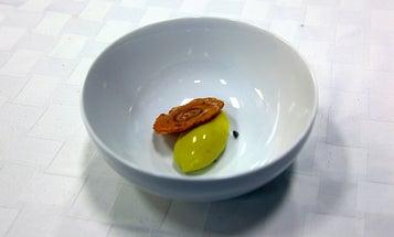 """Modernist Cuisine"" Is Making a Splash"