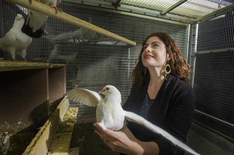 biologist with bird