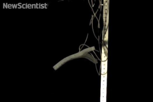 This Robot Can Jump 30 Times Its Own Height