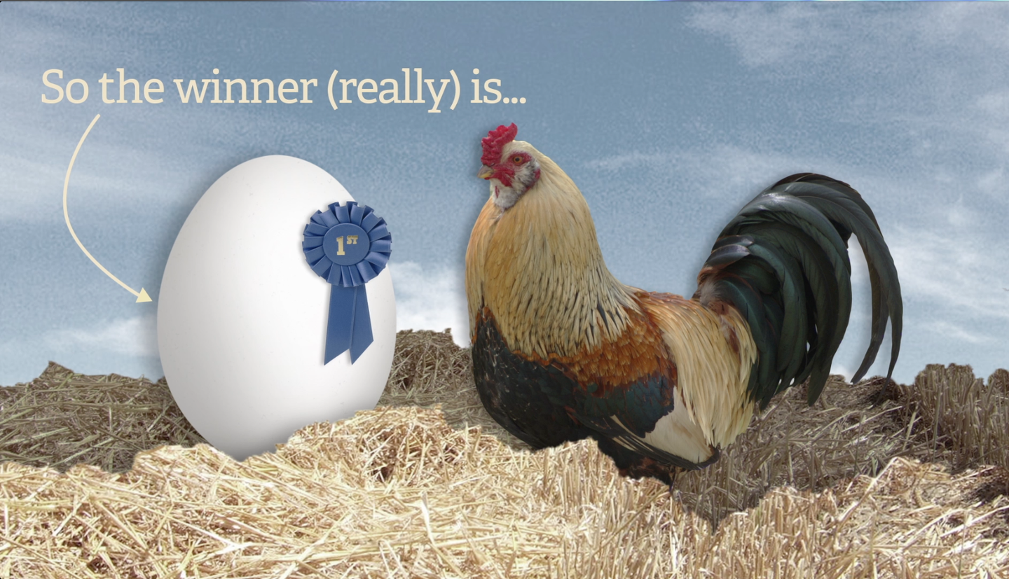 Which Came First, The Chicken Or The Egg? [Video]