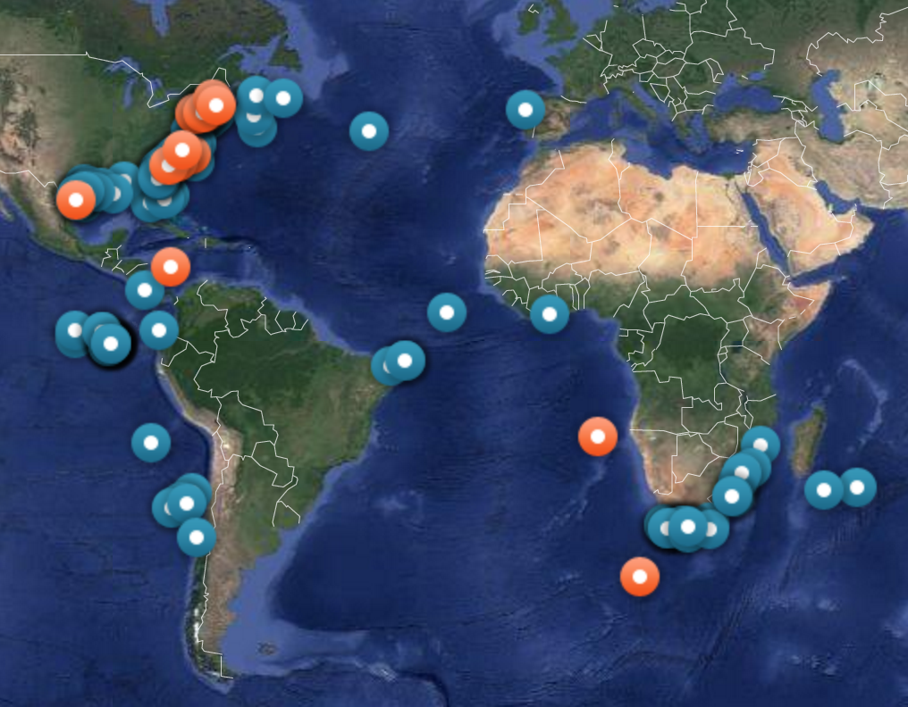 The recent whereabouts of sharks tagged by OCEARCH.