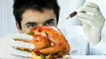 scientist injecting turkey
