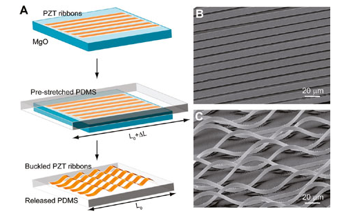 Stretchable Nanogenerators Could Use Lung Motion to Power Medical Implants