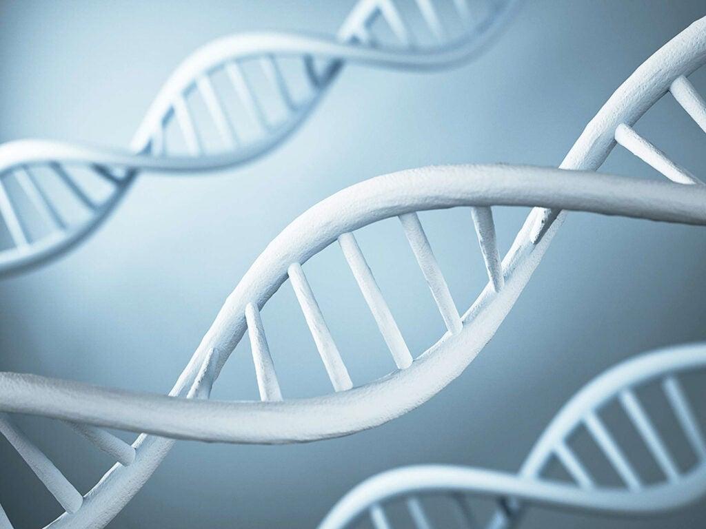 """DNA"""