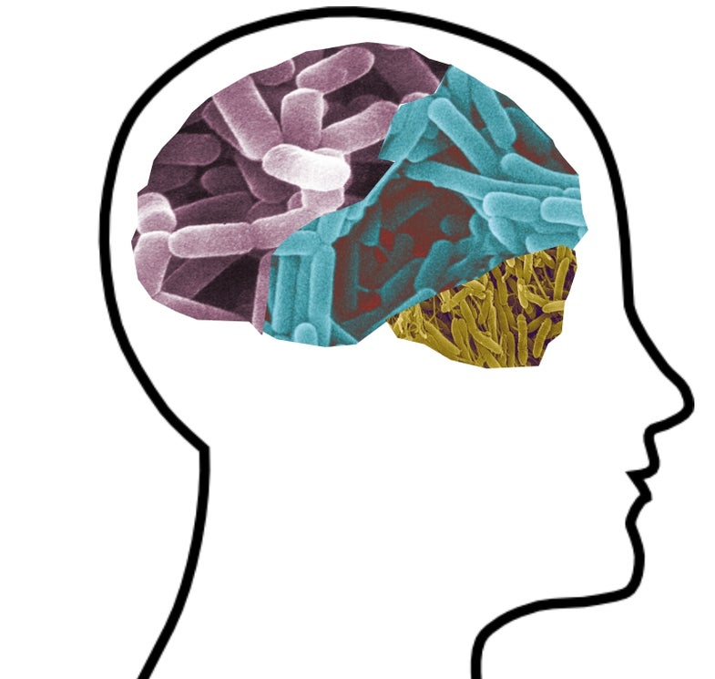 Forget Prozac, Psychobiotics Are the Future of Psychiatry