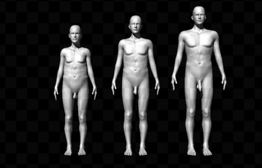 Penis Size Matters, Study Says