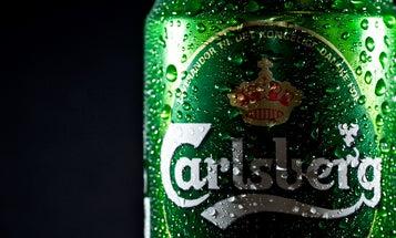 Brewing Company Carlsberg Considers Putting Beer In Cardboard Bottles