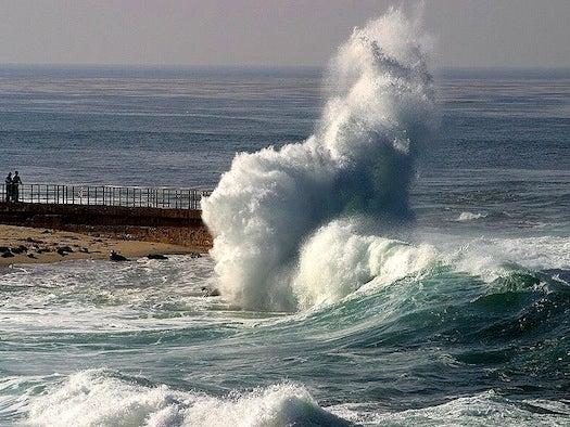 We Asked Twelve Ocean Experts How to Save the Seas