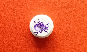 Can Taking A Pill Before Bed Get Rid Of Bed Bugs?