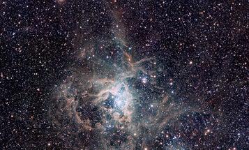 VISTA Telescope Reveals Tarantula Nebula in Brilliant Detail