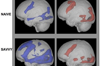 New Neurological Evidence That the Internet Makes People Smarter
