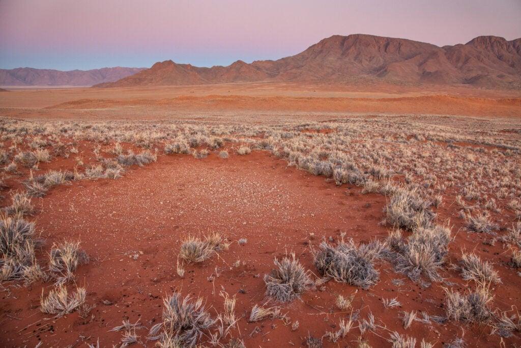 Namibia fairy circle 2