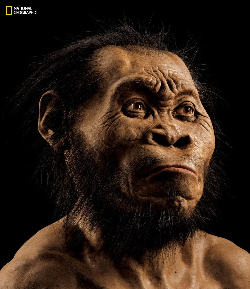 New Species On Human Family Tree Discovered In Ancient Mass Grave