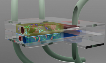 Cancer Treatment Would Be Even More Effective With 3D Tissue Modeling