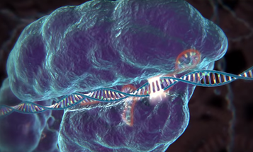 """Should Bioethicists """"Get Out Of The Way"""" Of CRISPR Research?"""