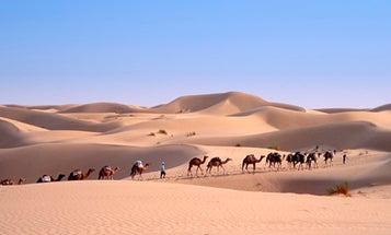 Scientists Concoct a $2-Trillion-Per-Year Plan To Geoengineer The Sahara Desert