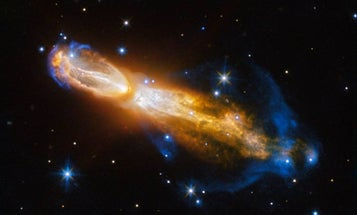 A scale-stripping gecko, an intergalactic bridge, and other amazing images of the week