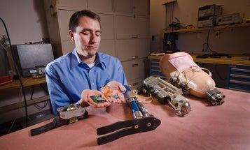 New Neural Interfaces Can Bring True Feeling to Artificial Limbs