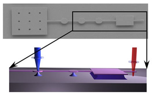 Nanoelectromechanical Sensor Can Instantly Detect Pathogens And Toxins