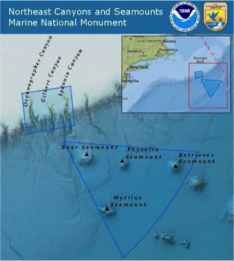 The new Northeast Canyons and Seamounts Marine National Monument.