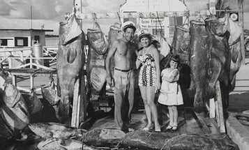 Fifty Years Ago, Fish Were Bigger; Fifty Years From Now, They'll Be Gone