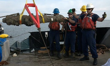 Archaeologists Pull 5 Of Blackbeard's Cannons From The Sea