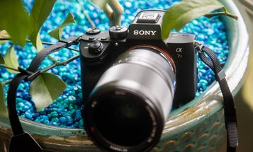 The sony A7R Mark III is the best camera of 2017