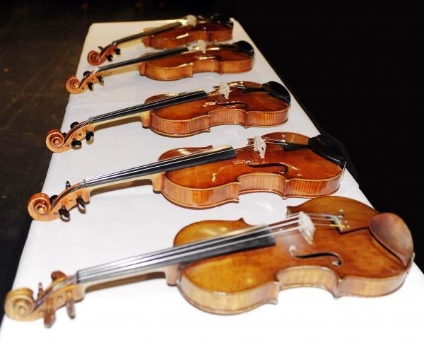Fungus-Infected Violin Beats Stradivarius in Listening Test