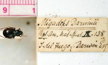 Decode Darwin's Handwriting To Help Science