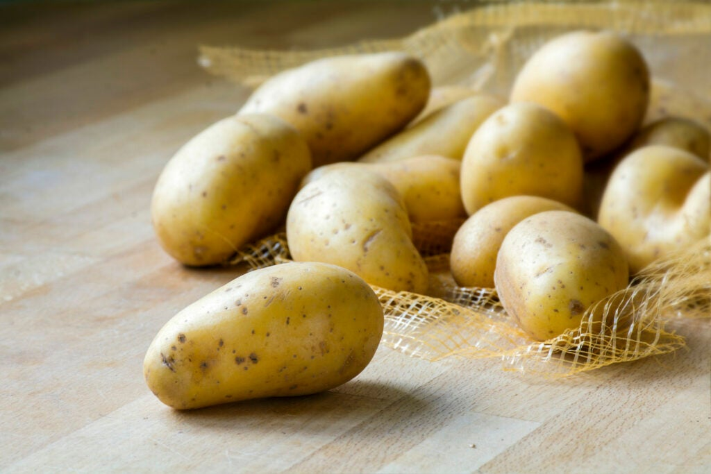 Several potatoes falling out of a sack