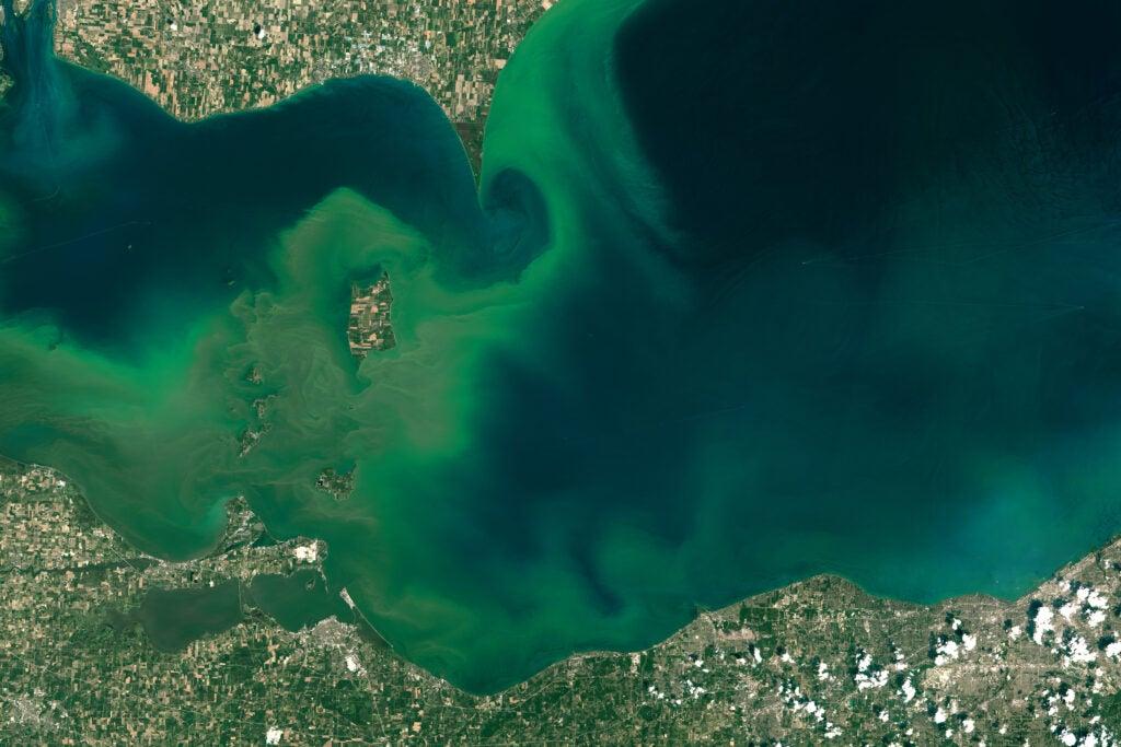 An algal bloom on Lake Erie