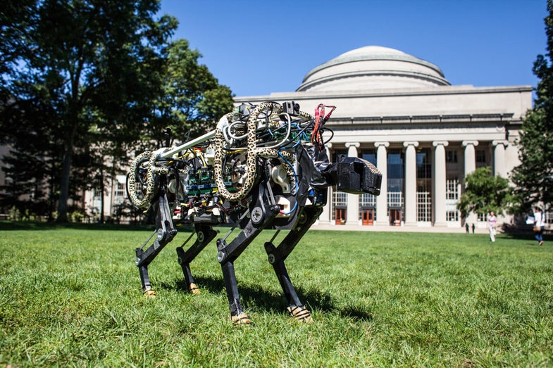 Fast-Running Robot Cheetah Let Off Its Leash