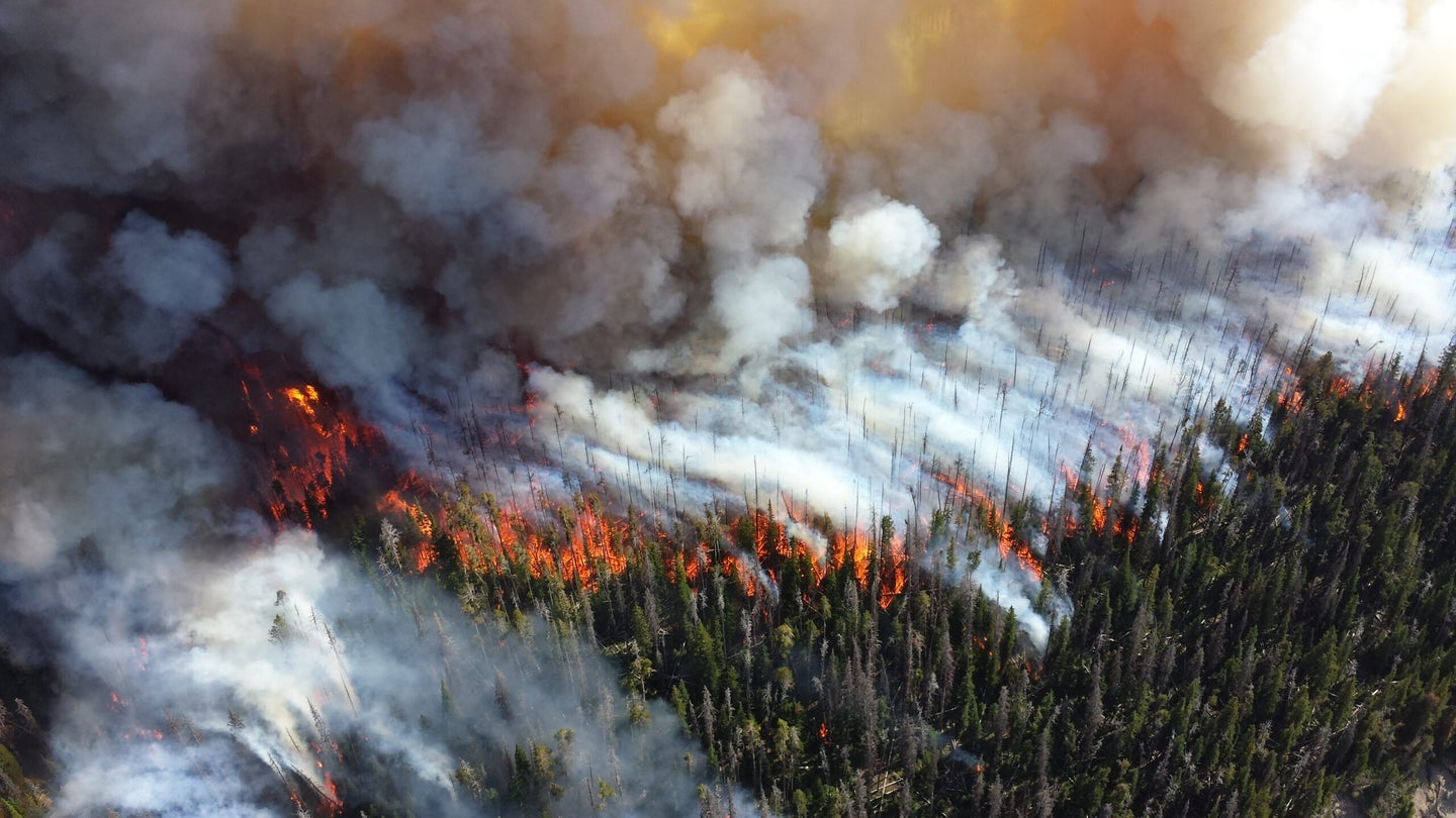 NASA Will Use Massive Satellite Network To Detect Wildfires As They Start