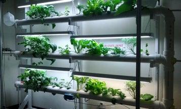 NASA Habitat Competition Looks For Bioregenerative Space Greenhouses