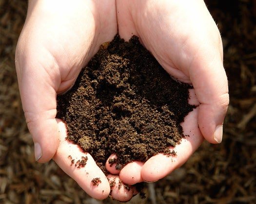 FYI: Just How Old is Dirt?