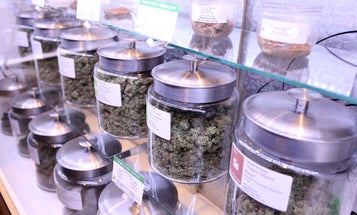 Is The U.S. Government About To Re-Classify Marijuana?