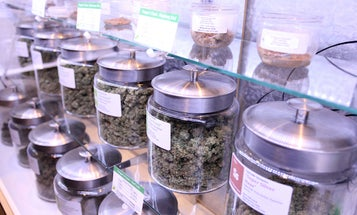 Scientists Separate Marijuana's Highs From Its Medical Lows