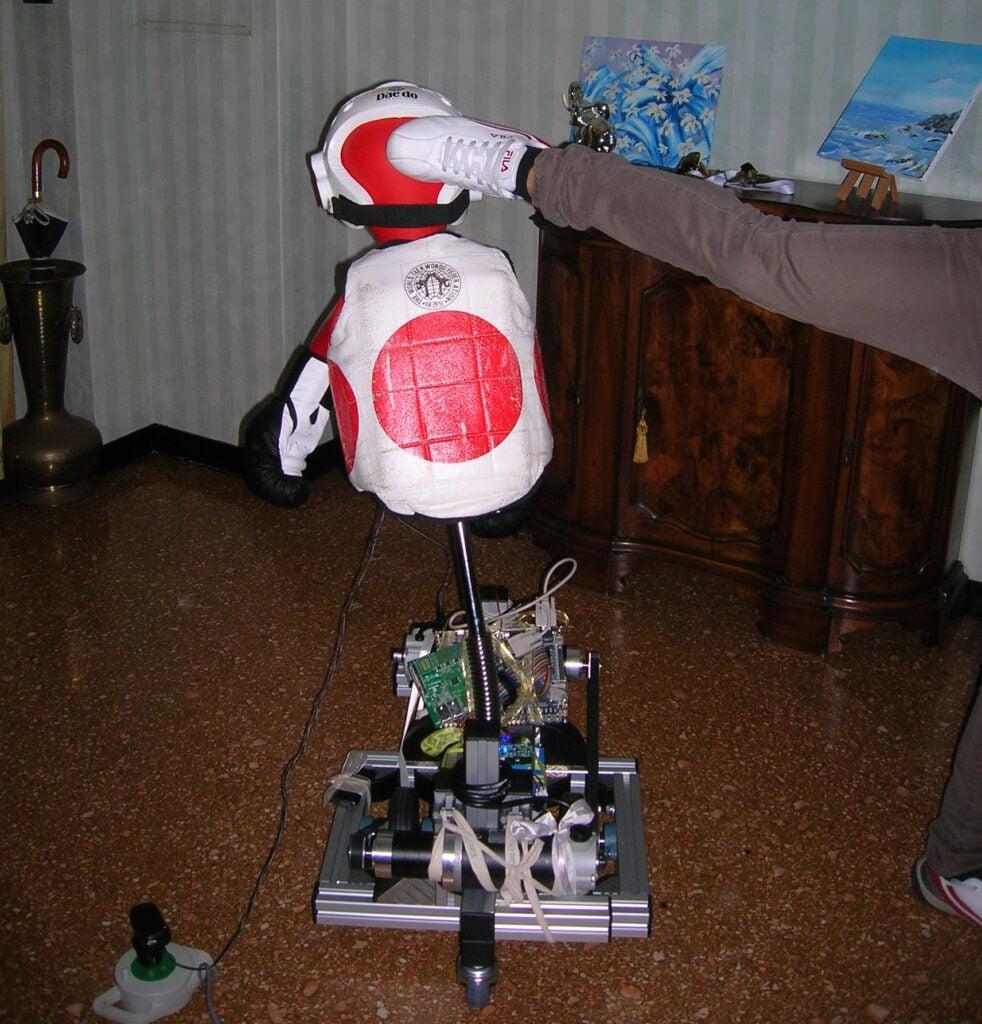 taekwondo robot