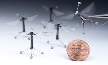 Flying Robot Bees Can Now Swim, Too