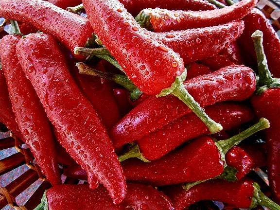 How hot peppers and marijuana could help cure gut problems