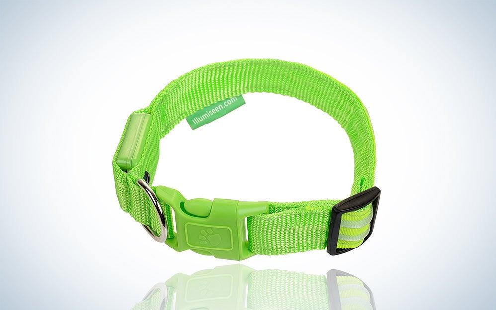 LED USB Pet Collar