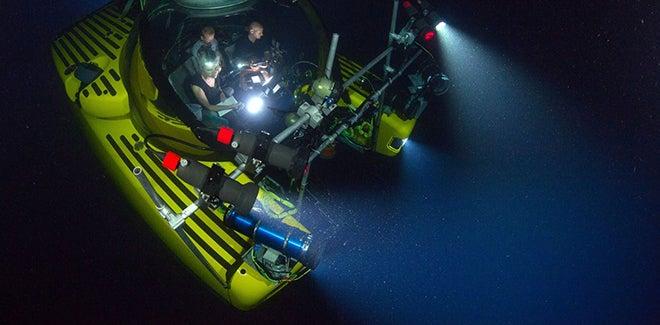 Exploring the Antarctic deep seas took me back in time