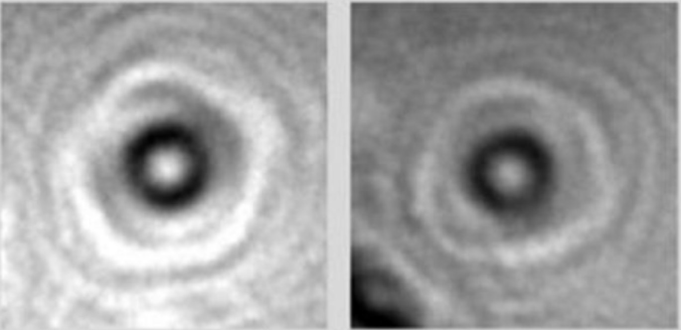 These Are The First-Ever Photos Of Individual Proteins