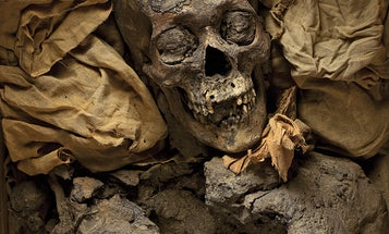 How Studying Mummies Could Cure Modern Diseases