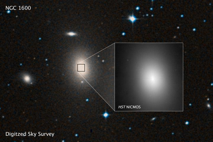 Supermassive Black Holes Are More Common Than We Thought