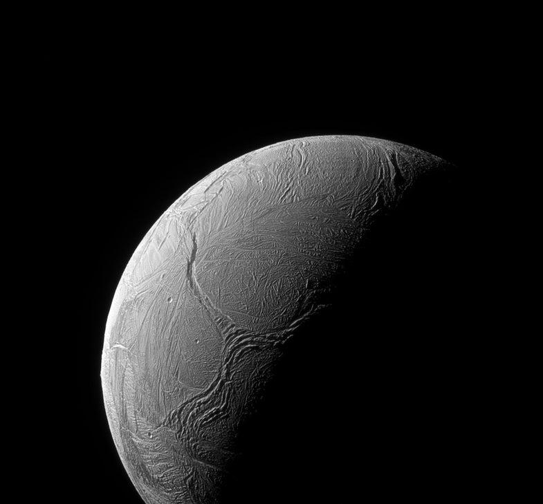 Enceladus Y-shaped 'tentacle' feature