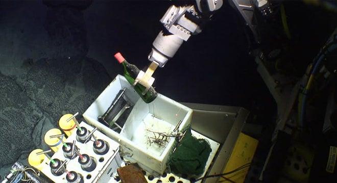 deep sea wine bottle